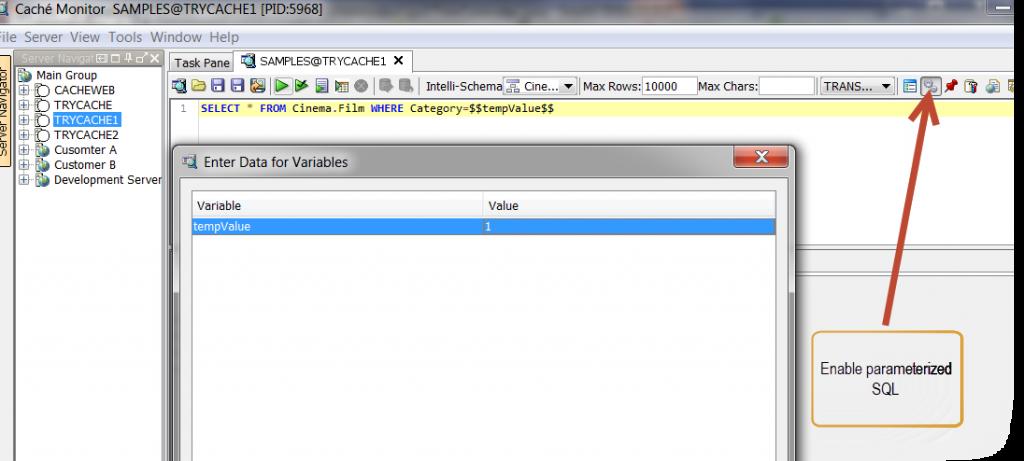 parameterized-SQL