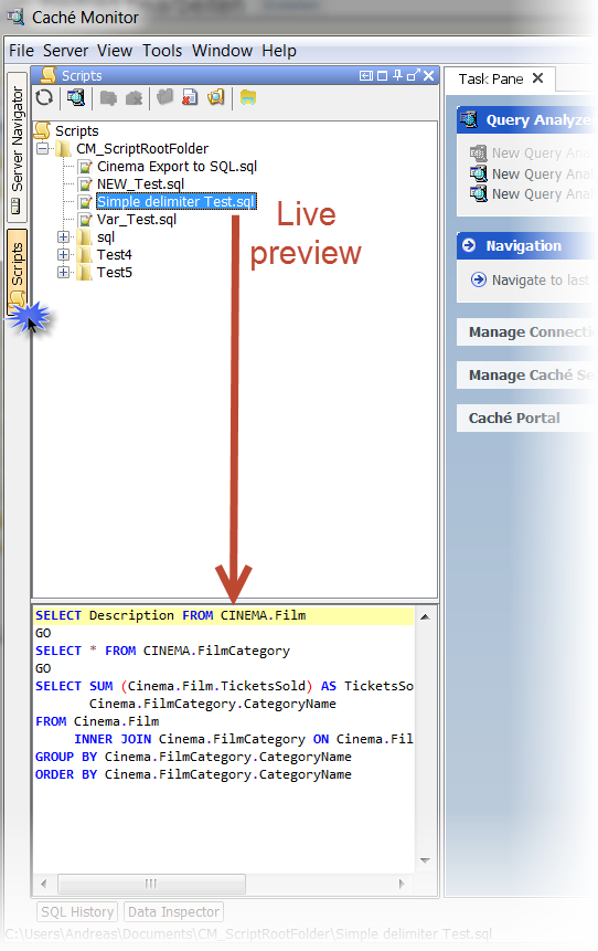 script_manager_live_preview
